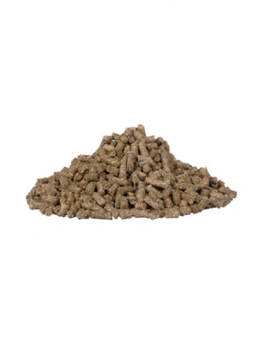 BrandonPlus Gastrointestinal 3kg Eimer